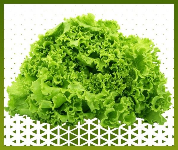 Livraison à domicile panier de fruits et légumes et salade batavia à nice chez Islam viandes