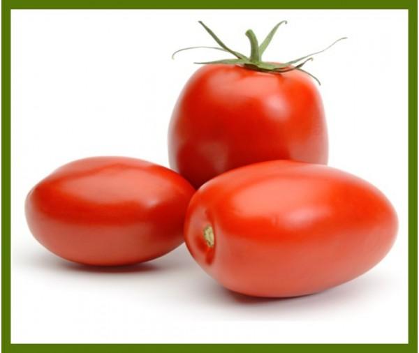Tomate romaine