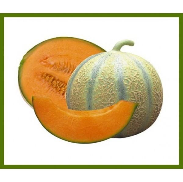 Melon charentais - Pièce
